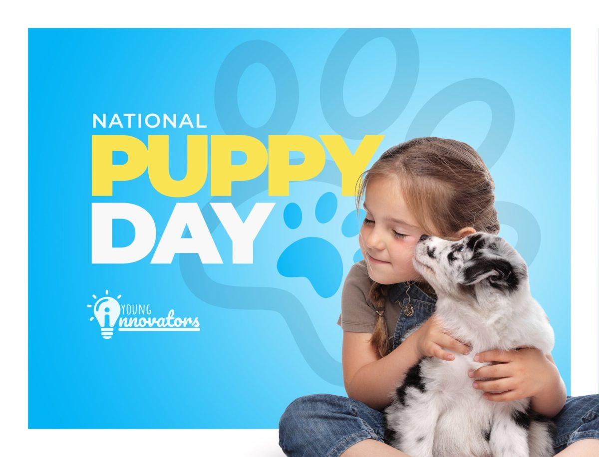 Puppy-Day (1)